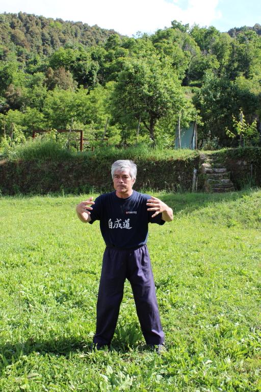 2014 Tokitsu Vico Corse