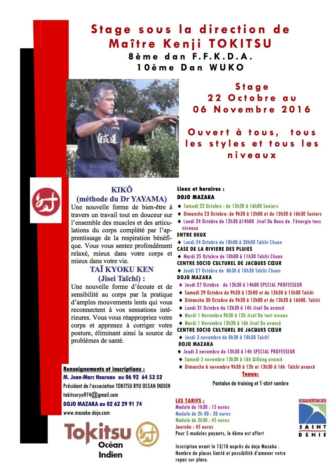 stage-de-sensei-4-2016reunion
